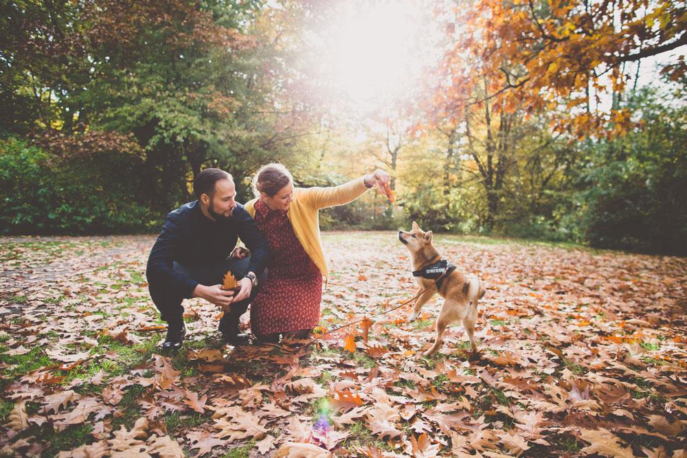 Spielen mit Hund im Laub