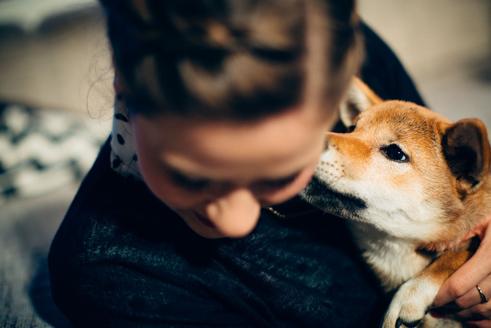 Hund küsst Frau