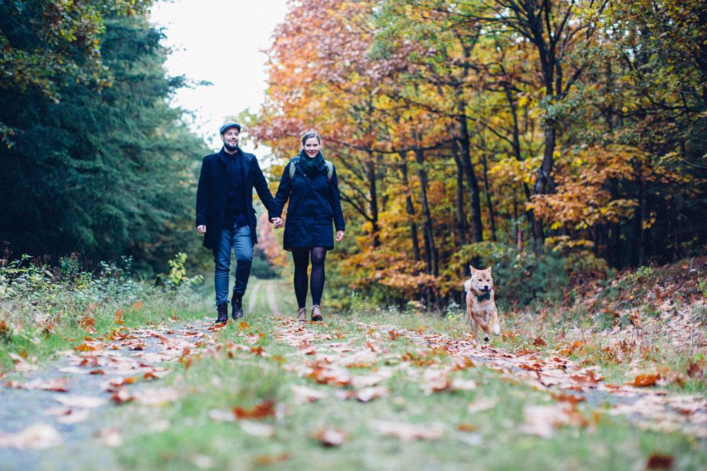 Herbstspaziergang mit Hund