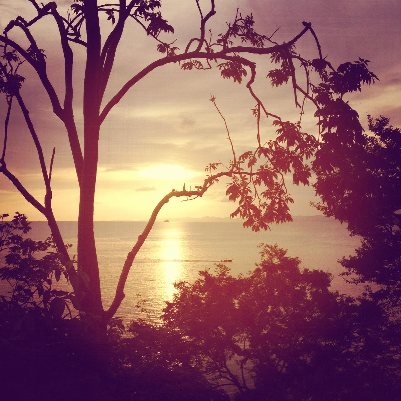 erdbeerwald_thai_sunset